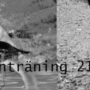 Duathlonträning 21/3